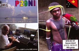 p29ni